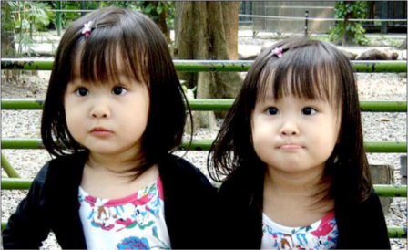 gemelas asiaticas
